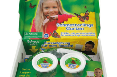 Schmetterlings-Garten-Set